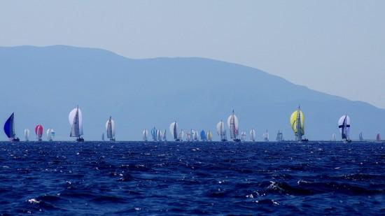 regatta1412