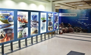 Καθημερινές οι επισκέψεις στις Εκθέσεις της HELMEPA | Skipper ONDECK - GrPerivallon.naxhelmepansp-879